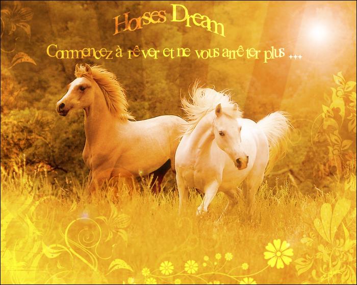Horses Dream Index du Forum