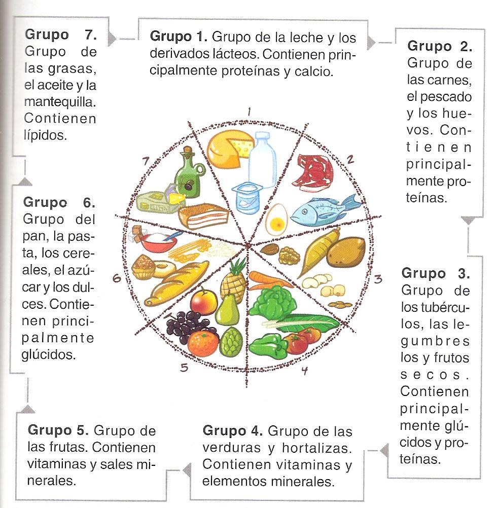 TheSchool - Los grupos de Alimentos