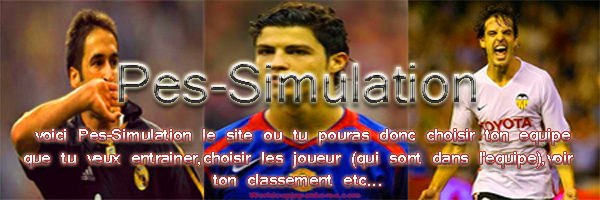 Pes-Simulation Index du Forum